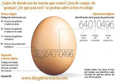 Chuleta para leer los códigos de los huevos, apuntes.