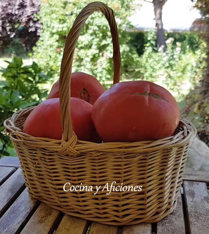 tomates-ebroverde