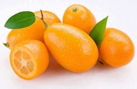 Kumquat, naranjas de la china, apuntes.