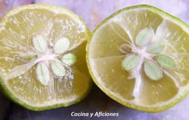 Limequat, entre el la lima y las naranjas chinas, apuntes.