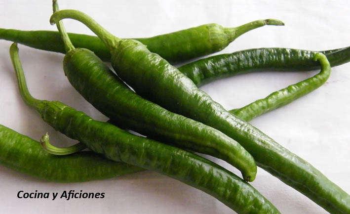 gindilla verde | Cocina y Aficiones