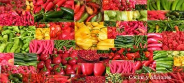 "un bonito ""Collage"": miles de guindillas, chiles, ajíes……."