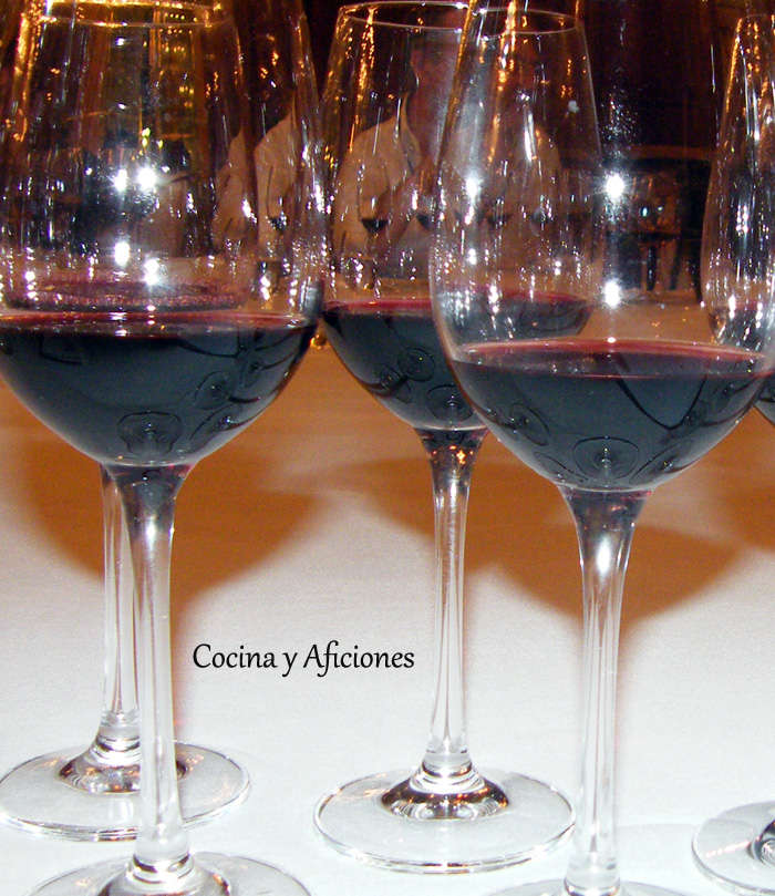 Proceso para la elaboración de un buen vino, apuntes.