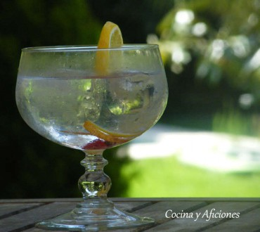El Gin -Tonic perfecto, apuntes