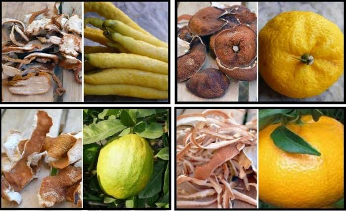 El uso de los botánicos en coctelería : los cítricos.