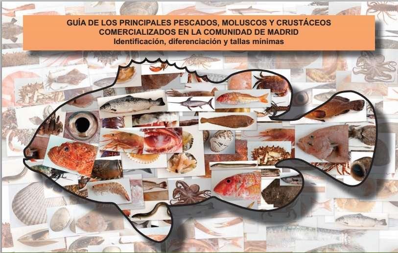 Guía de los principales pescados, moluscos y crustáceos.