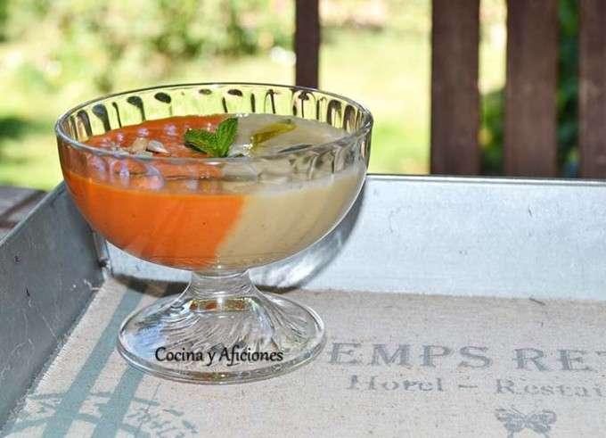 Sopa fria bicolor 1