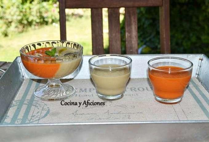 Sopa fria bicolor 6