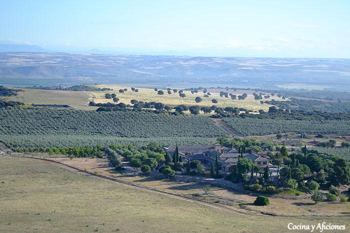 foto aerea de casas de hualdo