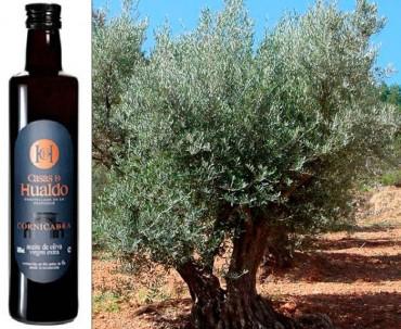 """El olivo y su aceite: el olivo """"cornicabra"""" y su aceite: Casas de Hualdo."""