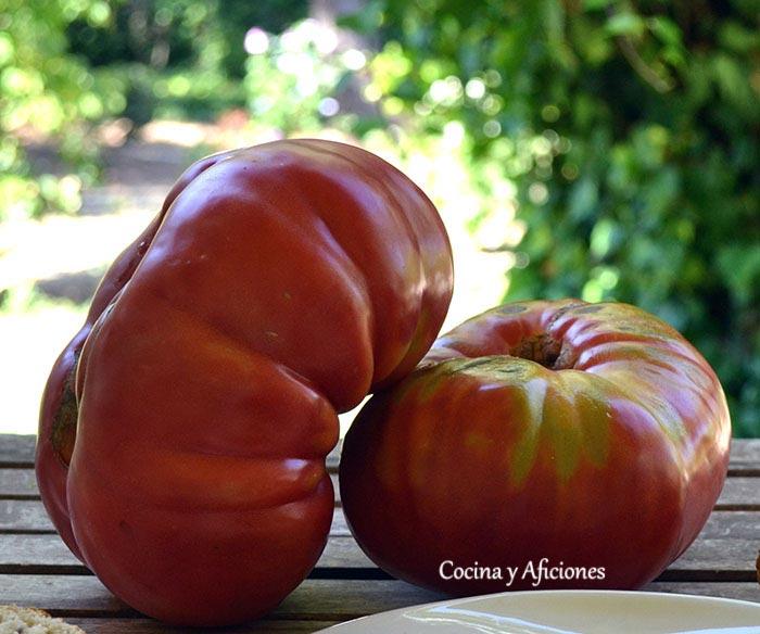 tomates-riojanos