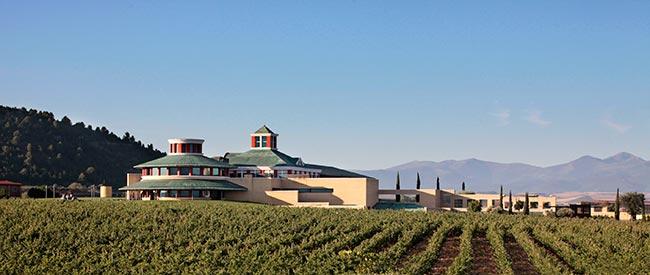 Museo Vivanco de la Cultura del Vino, una experiencia que no te puedes perder.