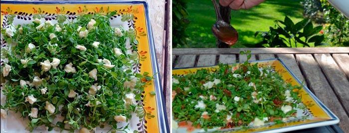 preparando-ensalada-de-pamplinas-ok
