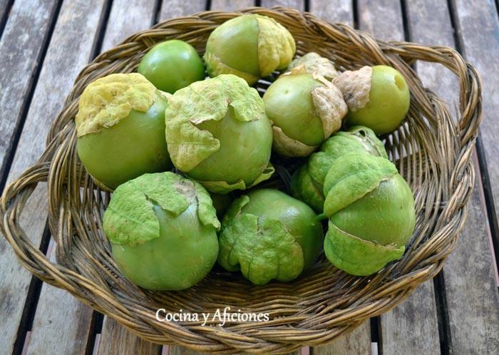 Tomatillo verde mexicano, apuntes