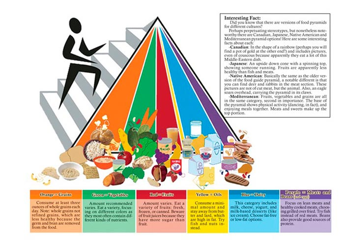 pirámide-alimenticia-fue-elaborada-por-The-Center-for-Nutrition-Policy-and-Promotion