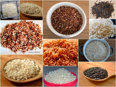 Conociendo el arroz: clasificación. Apuntes.