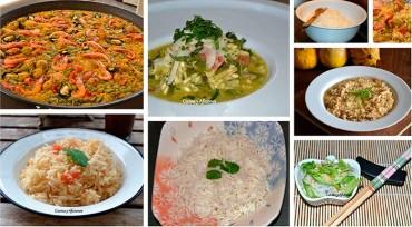 Conociendo el arroz 4, técnicas de cocina. Apuntes