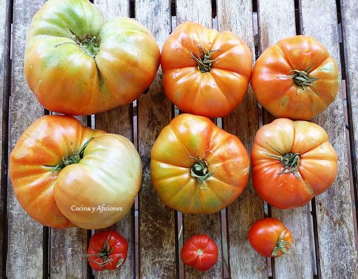 tomates-de-huerta