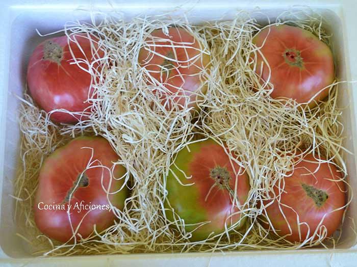 Tomate-rosa-del-Bajo-Aragón---ebroVerde-1
