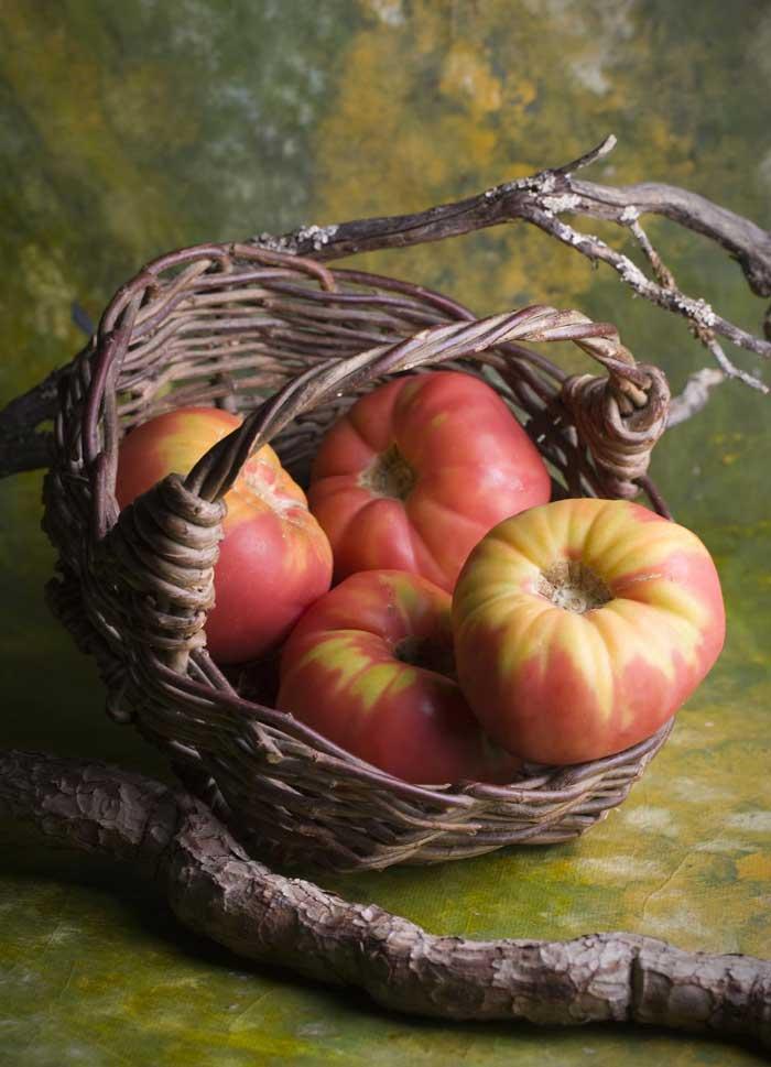 Tomate-rosa-del-Bajo-Aragón---ebroVerde-8