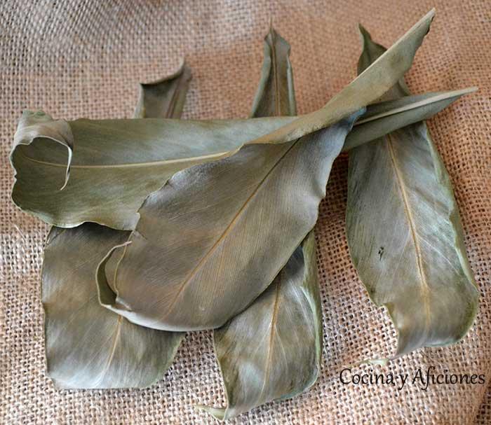 hojas de cardamomo