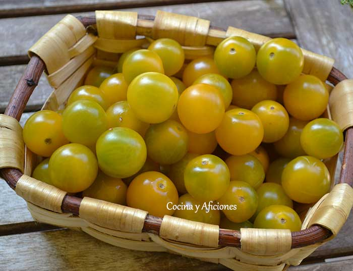 tomates-amarillos