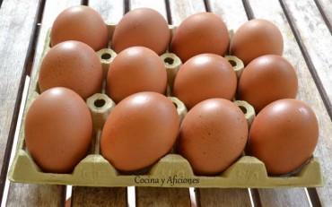 Diez puntos imprescindibles para conocer un huevo fresco,  apuntes