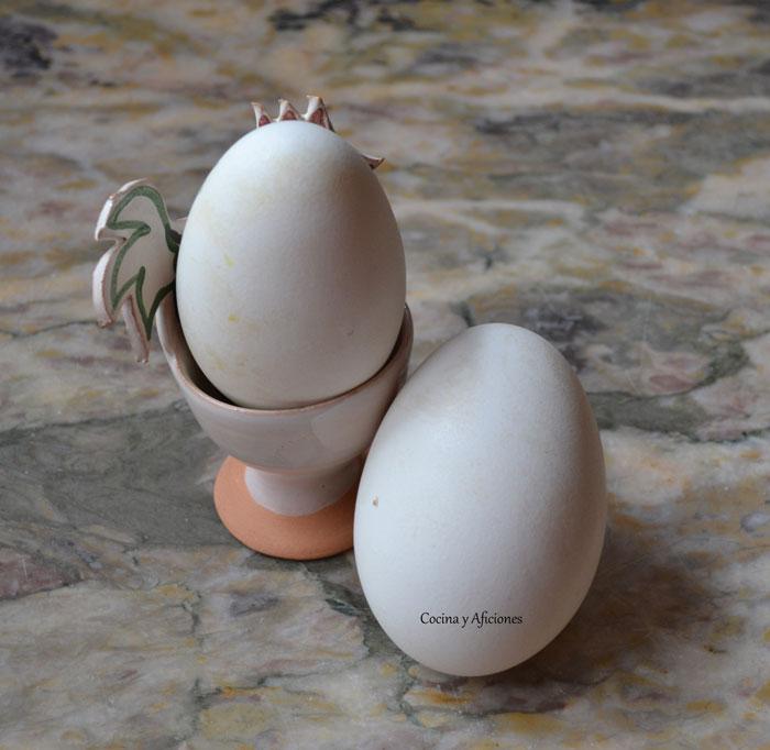 huevos-de-oca