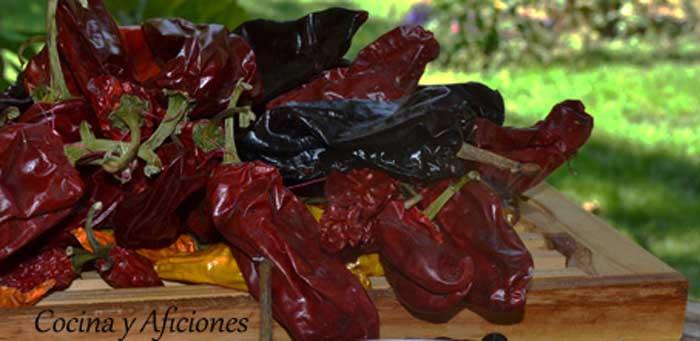 pimientas-palmeras