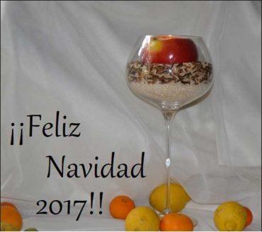 Feliz Navidad 2017!!!!