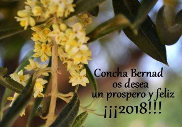 Feliz 2018!!!!