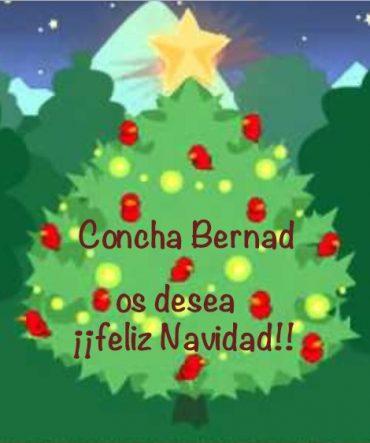 Feliz Navidad 2018!!!