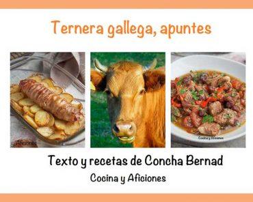 Ternera de Galicia apuntes y dos recetas: envoltinis de ternera gallega rellenos de queso Arzúa-Ulloa y estofado de ternera gallega con vegetales, receta más fácilimposible.