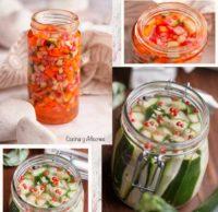Los fermentados, apuntes y recetas.