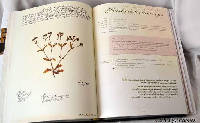El cocinero recolector y las plantas silvestres 1