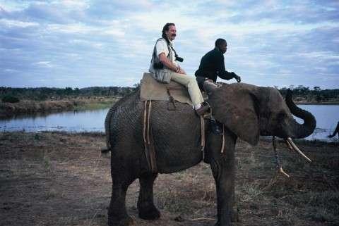 Rafa el un elefante en Zimbabue