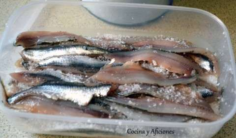 anchoas en filetes