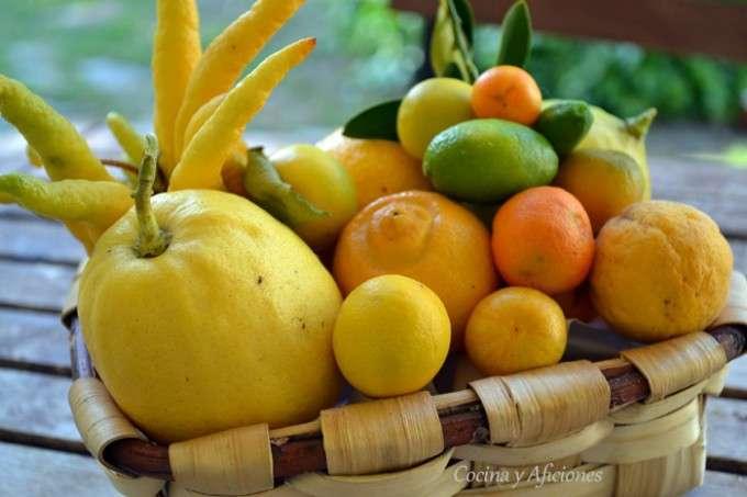 citricos ok
