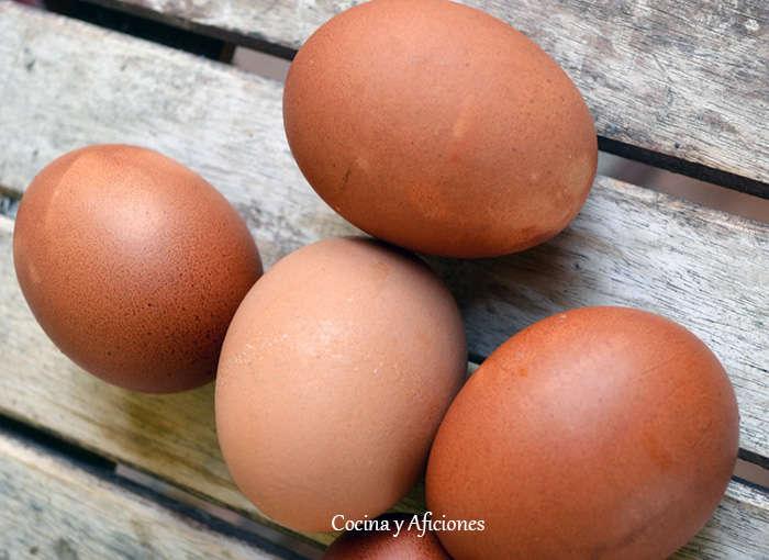 El huevo y su etiqueta, apuntes.