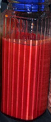jarra de gazpacho de remolacha