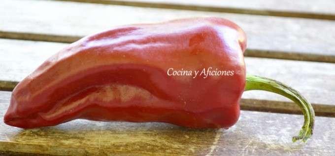 pimienta roja 1