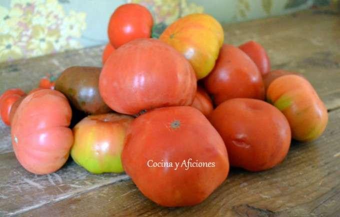 tomate (3)