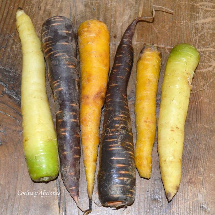 zanahorias colores ok